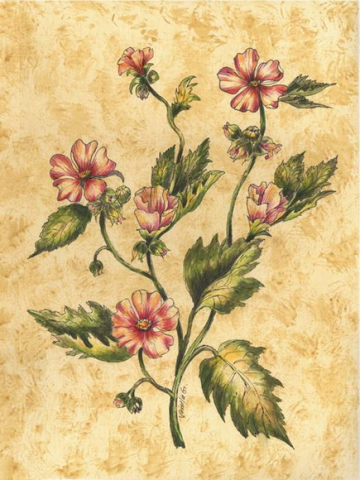 Wild Flowers-2 - Vessela