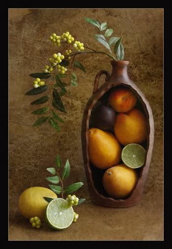 Fruits and Berries - Natalia Kozlovtseva