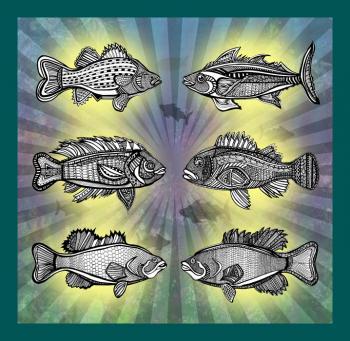 Fish Tank- 1