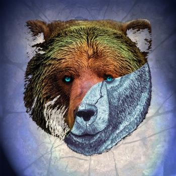 Portrait of a Brown Bear-color 1
