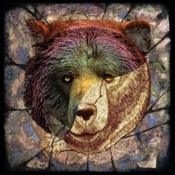 Portrait of a Brown Bear-color 2