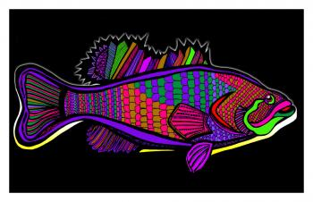 Fish1-color5-black-bgr-wborder - Fred Kelly