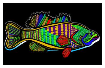 Fish1-color6-black-bgr-wborder - Fred Kelly