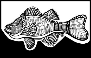 Sea Bass (Fish 7) Blk & White