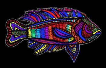 Fish8-color1-black-background-wborder - Fred Kelly