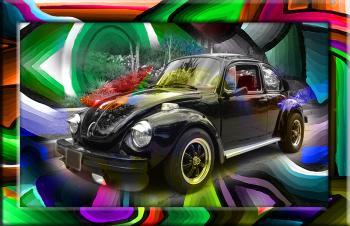 Volkswagen Black  - Fred Kelly