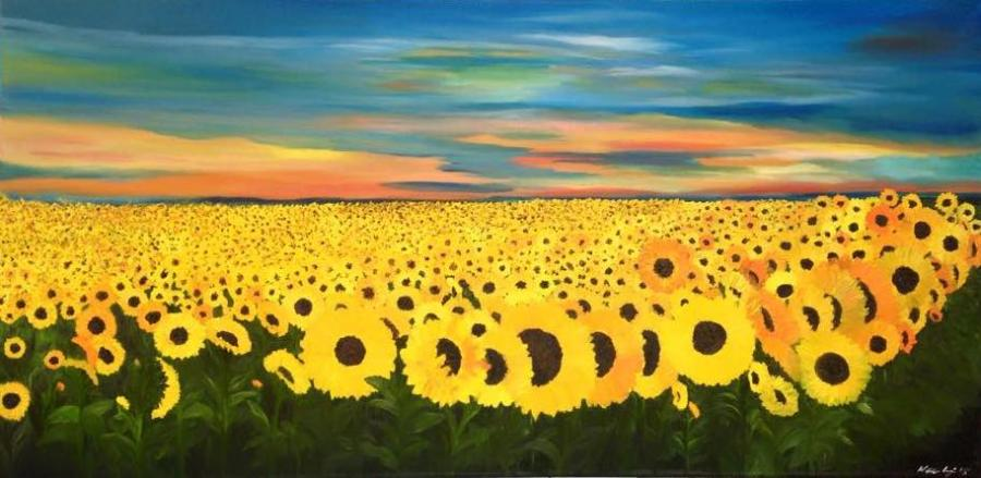 Sunflower Fields (2) - Original Paintings