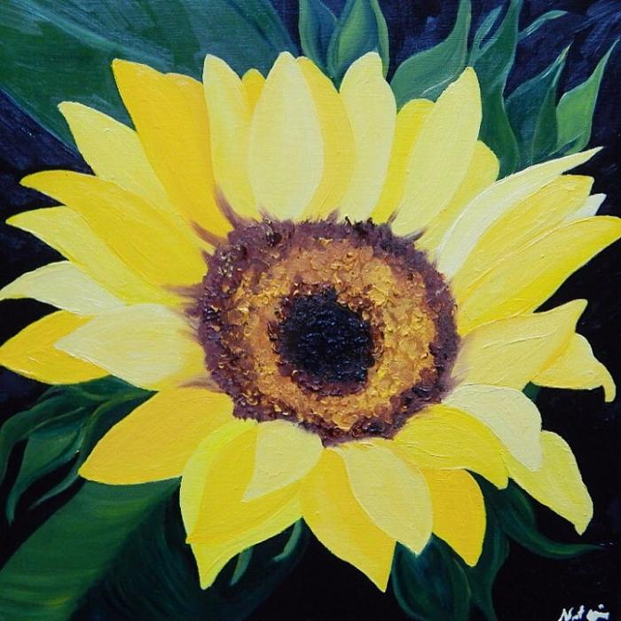 Sunflower - Original Paintings