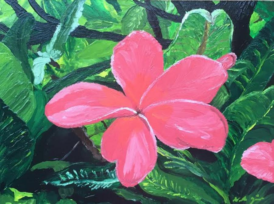 Pink Plumeria - Original Paintings