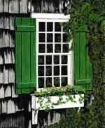 Green Shutter