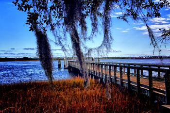 Daniel Island 3 - H. Scott Cushing