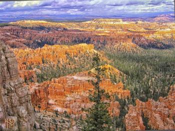 brice canyon - H. Scott Cushing