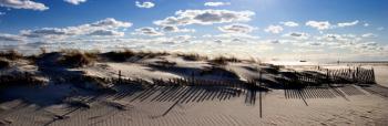 Shore sunrise 77 - H. Scott Cushing