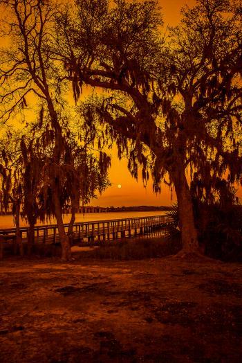 Wando Daniel Island - H. Scott Cushing