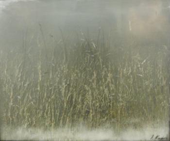 Grass I, 2006 - KUPER YURI / ЮРИЙ КУПЕР