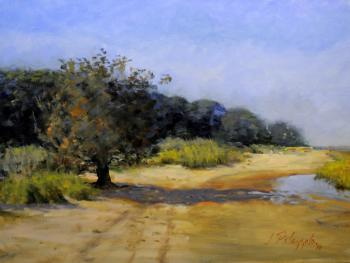 Hands Creek Beach, East Hampton #1 - Joseph Palazzolo