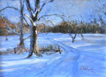 Snowfall, Planting Fields - Joseph Palazzolo