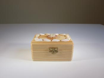 Pine Wood & Seashell Dream Box - Dream Boxes