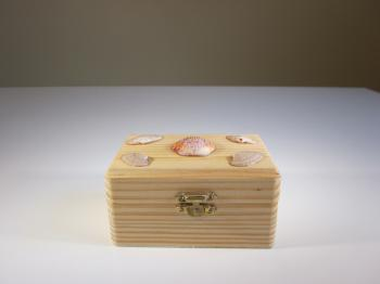 Pine Wood & Seashell Dream Box - Sold Items