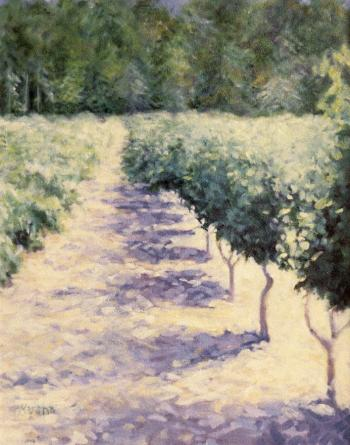 The Vineyard - Marsha Tarlow Steinberg