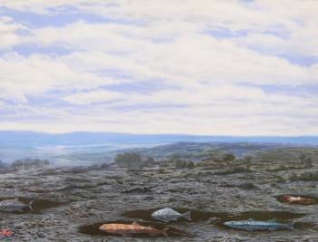 Fish In Sedimentary Bubbles - Alexander Zakharov