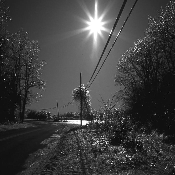 Moonlite Path (B&W).
