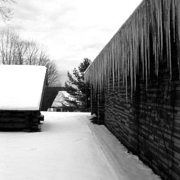 Winter Ice (B&W).