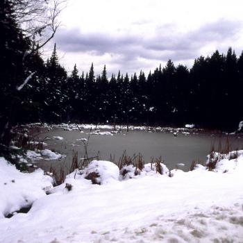 Adirondack Landscape (color)