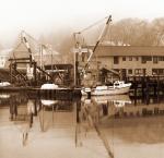 Dock - Bruce Passen