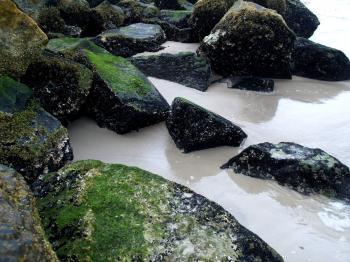 Rocks - Bruce Passen