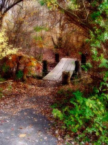 Emerald-Path - Bruce Passen